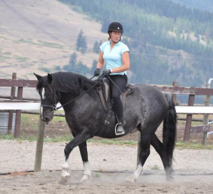 riding lessons, horse training, horsemanship, connected riding